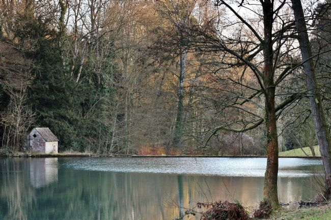Susan Snow | Lake in the Cotswolds