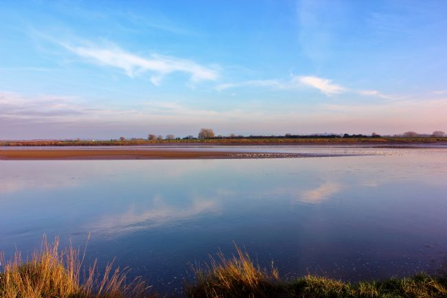 Susan Snow | View across the River Severn