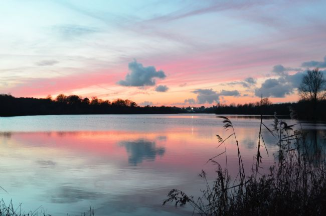 Jessica Sims | Whitlingham Broad Pink Sunset, Norwich