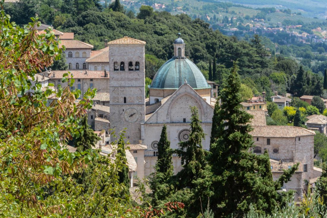 Mike Carroll | Assisi
