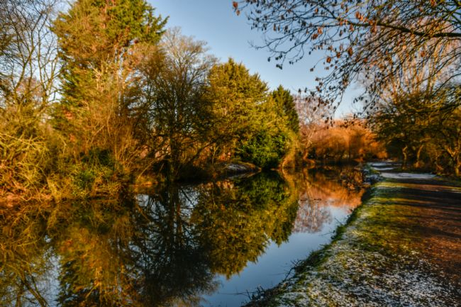 Mike Carroll | River Stort on a fine winter day