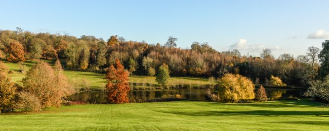 Mike Carroll | Autumn Panorama