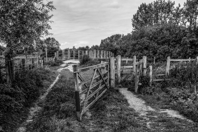 Mike Carroll | Gate to the bridge - Black and white