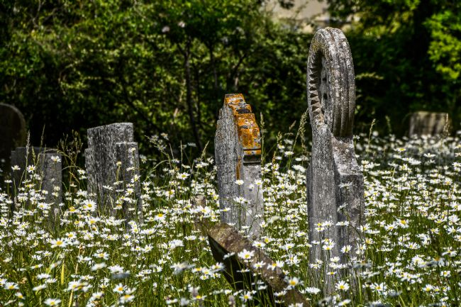 Mike Carroll | In a country churchyard (1)