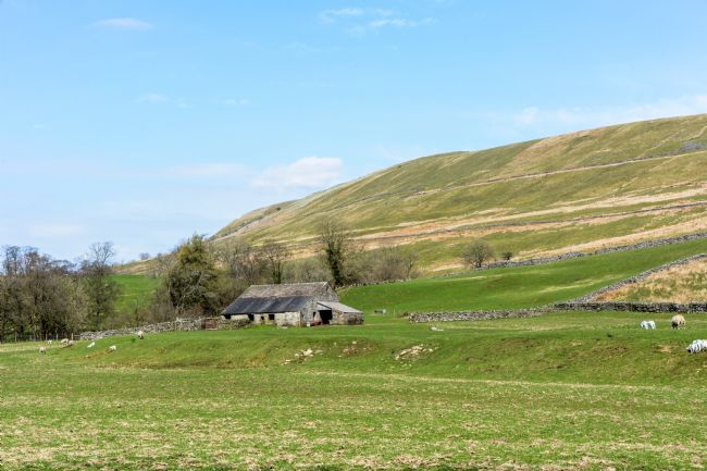 Mike Carroll | Swaledale Farm Scene