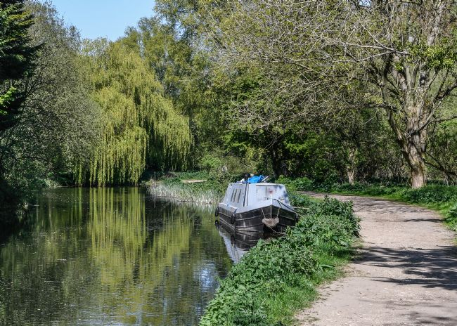 Mike Carroll | Spring-time on the River Stort