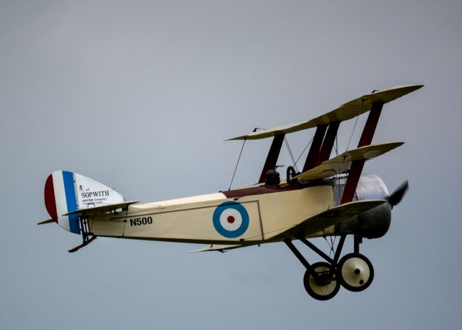 Mike Carroll | Sopwith Triplane