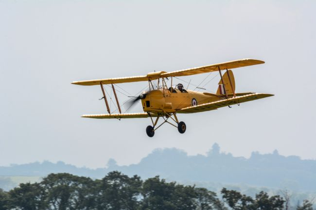 Mike Carroll | Tiger Moth