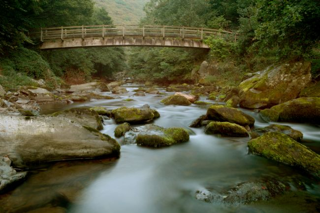 Graham Carnduff-Youngg | Woodside Bridge, Lynmouth