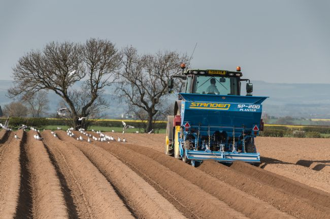 Richard Laidler | Sowing the Potato Crop