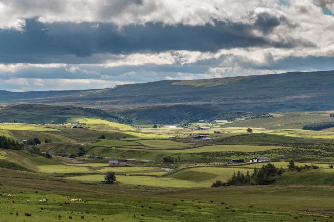 Richard Laidler | Sunshine and shadows on Upper Teesdale