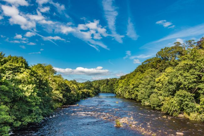 Richard Laidler | Late Summer on the River Tees at Whorlton
