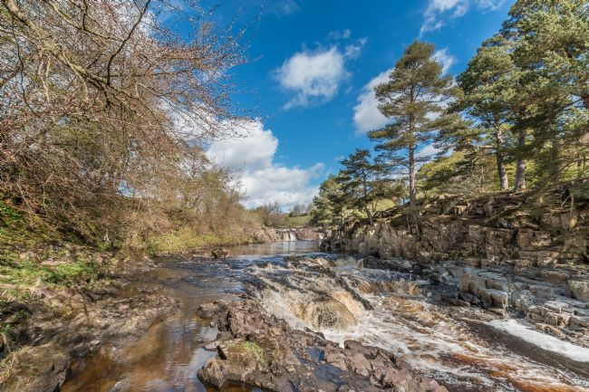 Richard Laidler | Spring at Low Force Waterfall, Teesdale