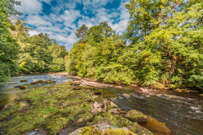 Richard Laidler | The River Tees between Cotherstone and Romaldkirk