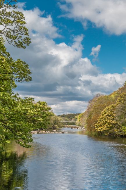 Richard Laidler | Towards Whorlton Bridge from Wycliffe, Teesdale