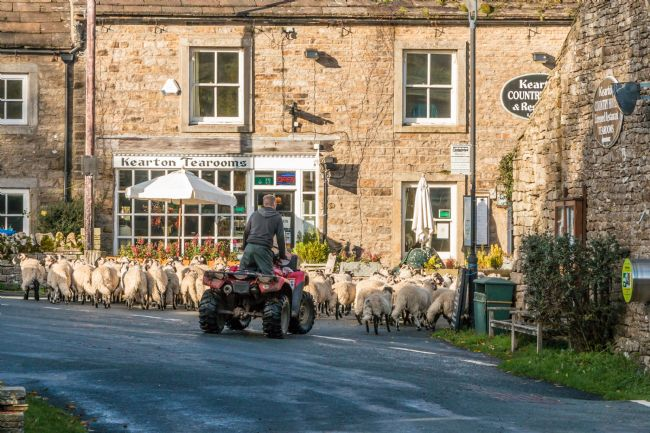 Richard Laidler | Going for Afternoon Tea at The Kearton, Thwaite, Swaledale