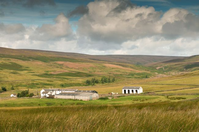 Richard Laidler | Middle End Farm, Teesdale