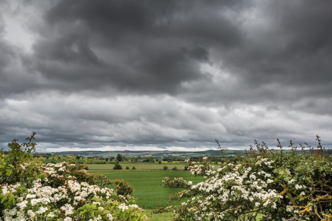 Richard Laidler | Towards Newsham under a Stormy Sky