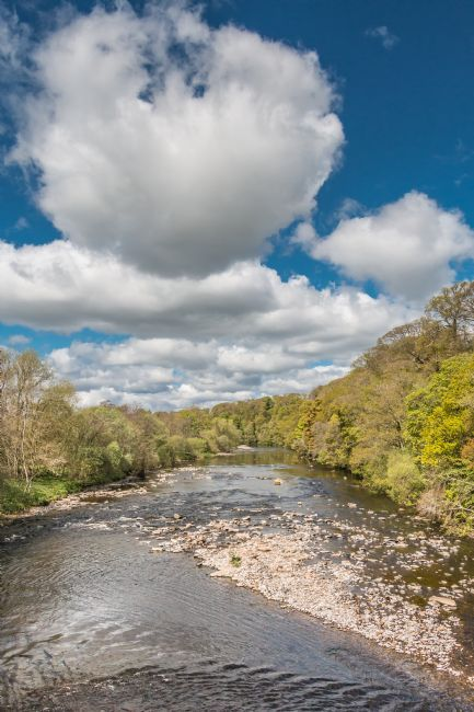 Richard Laidler | Big Sky over the River Tees at Whorlton in Spring
