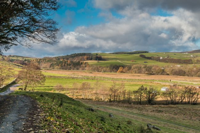 Richard Laidler | Over to Ettersgill from Holwick, Teesdale in Autumn