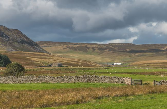 Richard Laidler | Cronkley Scar and Widdybank Farm, Upper Teesdale