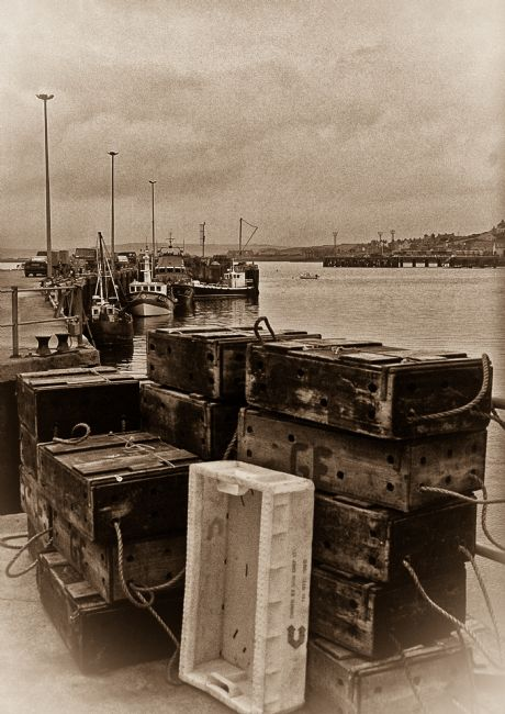 Tom Dolezal | Fisherman's quay at Stromness