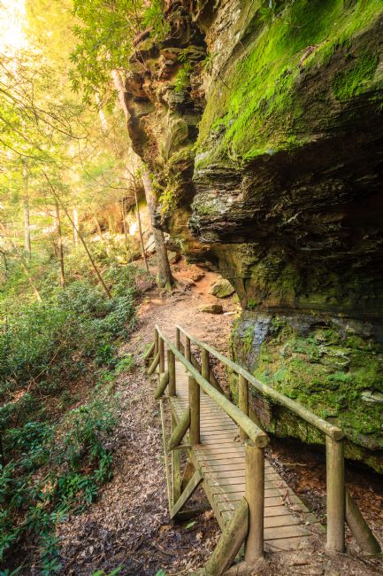 Alexey Stiop | Hiking trail in Red River Gorge