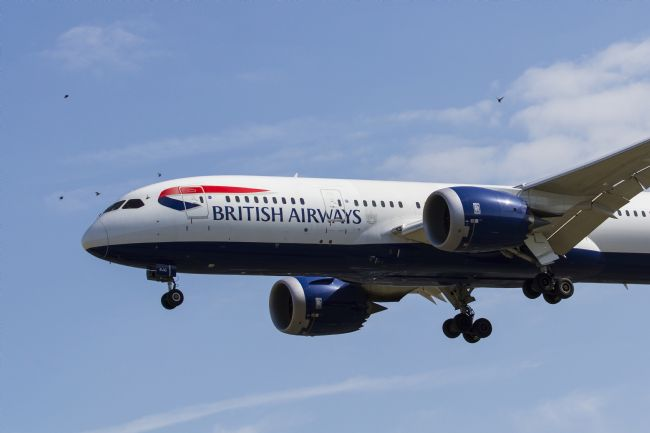 David Pyatt | British Airways and Birds