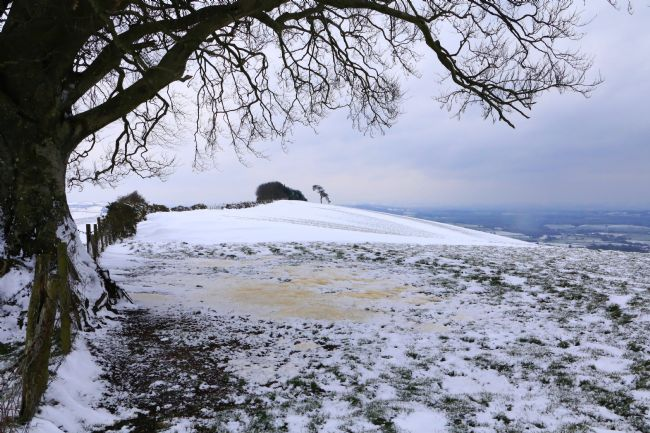 Heather Coleman | Raddon Hills snow scene, Devon