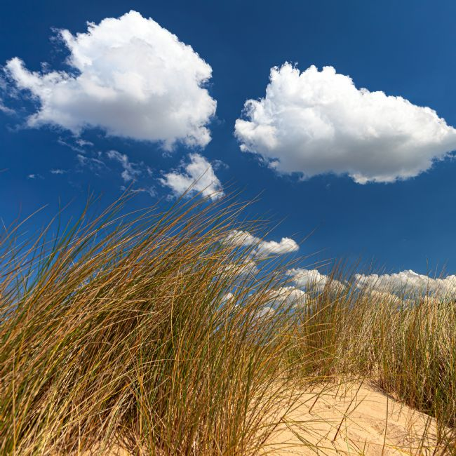 David Powley | Clouds above the sand dunes