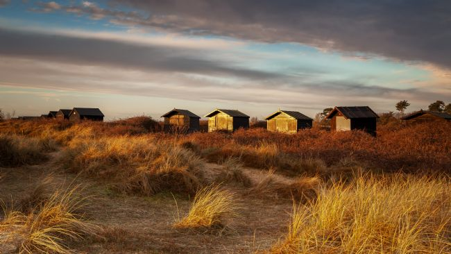 David Powley | Walberswick Beach Huts At Dawn