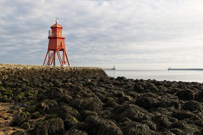 Rob Cole | The Herd Groyne Lighthouse, South Shields