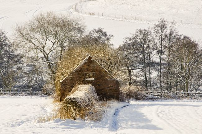 Steve Stamford | Barn and snow