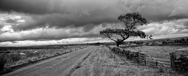 Steve Stamford | The road ahead - mono panoramic