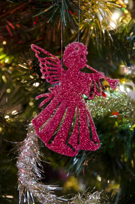 Steve Stamford | Christmas angel
