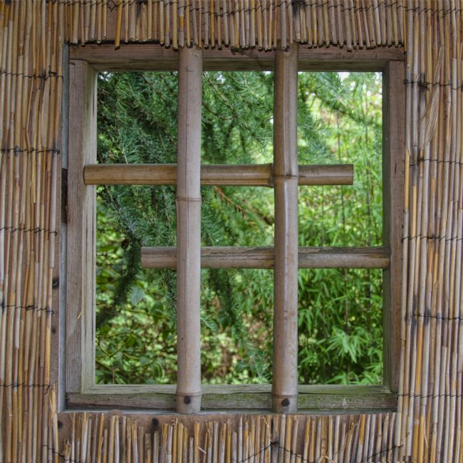 Steve Stamford | Bamboo window