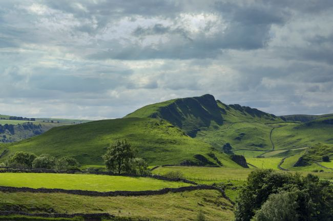 Steve Stamford | Chrome Hill 3