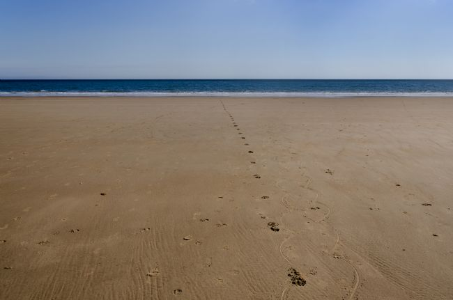 Steve Stamford | Footprints in the sand - landscape