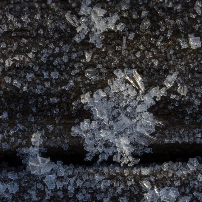 Steve Stamford | Ice crystals square