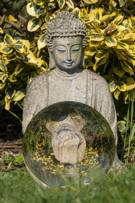 Steve Stamford | Buddha and ball