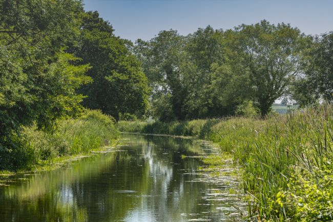 Mary Fletcher | Sampford Peverell Canal