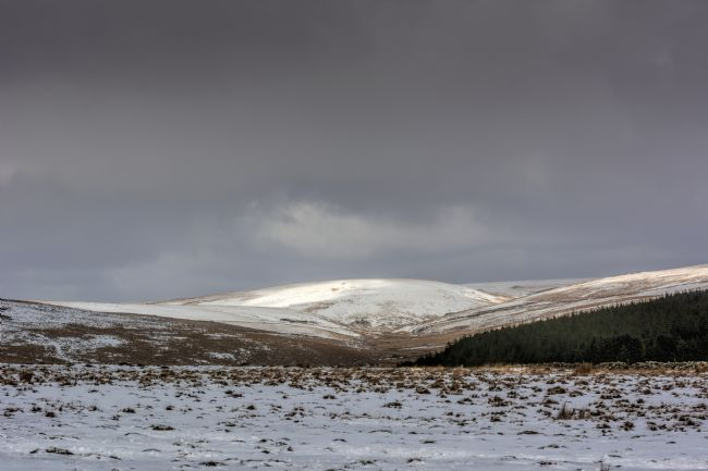 Mary Fletcher | Delicate Dusting on Dartmoor