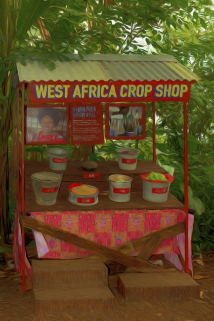 Mary Fletcher | West Africa Crop Shop