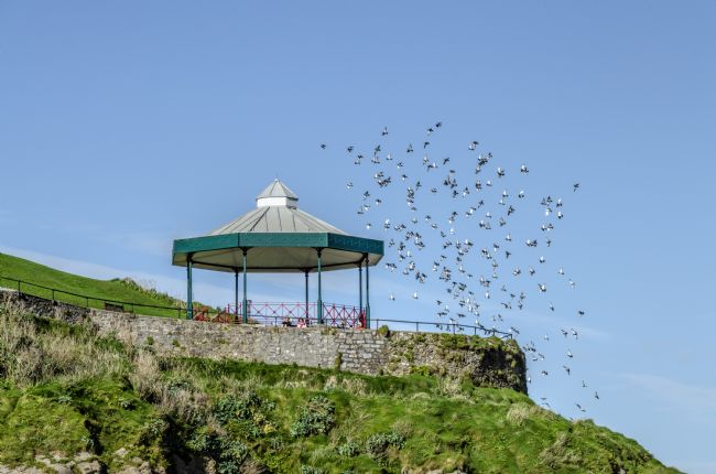 Mary Fletcher | The Bandstand at Tenby