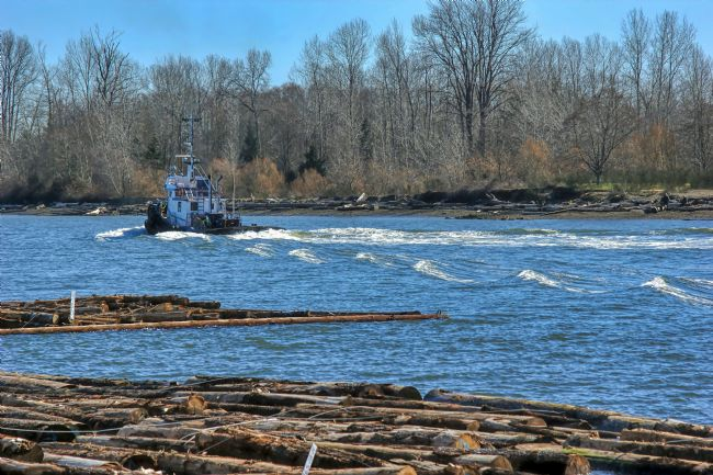 Chris Langley | Log Boom Barge