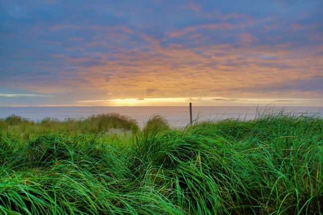 Chris Langley | Sunset from the dunes