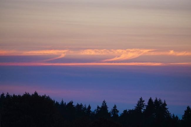 Chris Langley | Across The Salish Sea at Dusk