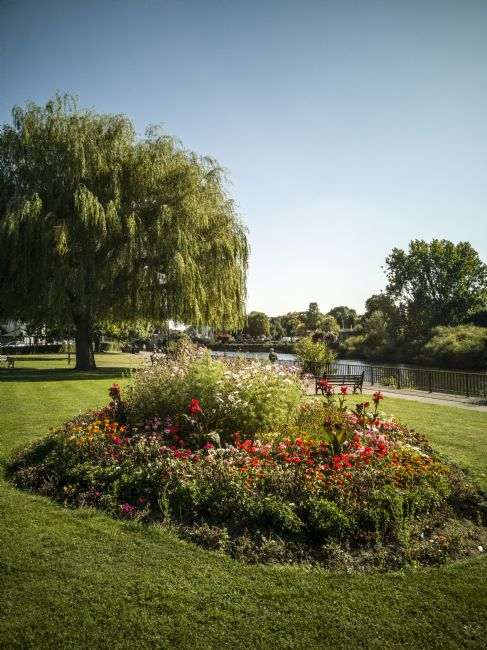 Jay Lethbridge | Flower bed and weeping willow tree by the River Severn