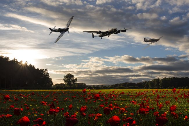 James Biggadike | Battle of Britain Poppy Pride