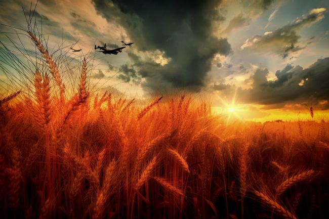 James Biggadike | BBMF Harvest